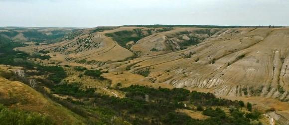 """Природный парк """"Щербаковский"""" (Щербаковская балка) — ландшафтный памятник природы Камышинский район."""