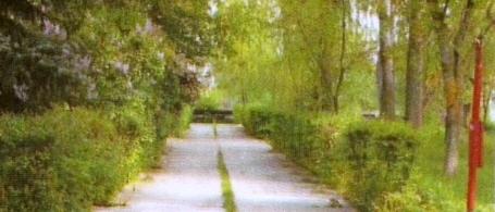 Городской детский спортивно-оздоровительный комплекс. Фроловский район, х.Ветютнев  Волгоградская область.