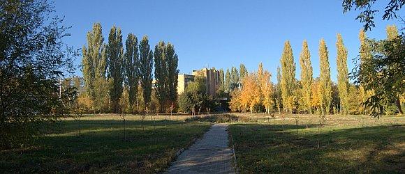 """Санаторий """"Дубовка"""" расположен в прекрасном парке на берегу Волгоградского водохранилища, в 55 километрах от Волгограда."""