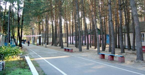 ДОЛ «Золотой колос». Лагерь расположен в живописном сосновом бору, вблизи станицы Филоновской Новоаннинского района Волгоградской области.
